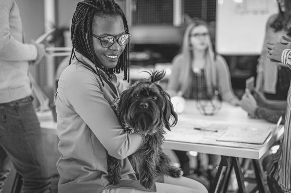 Office Pets and Your Company Policy
